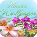Flower Wallpaper & Background